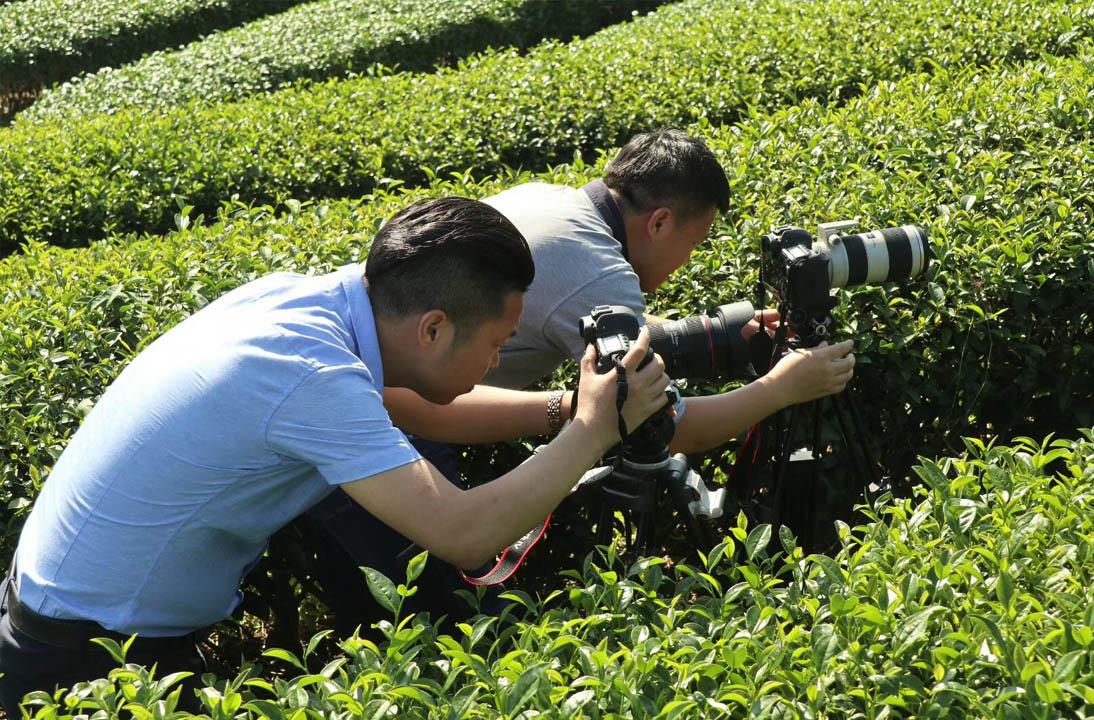 【新闻】全域影视传媒顺利结束中科富硒茶宣传片拍摄